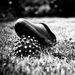 Dangerous ! Mines ! (St.Blues) Tags: blackandwhite bw 120 film monochrome sepia analog ball mediumformat square 1 photo shoes dof bokeh grain 7 rangefinder 6x7 nikkor 67 wideopen 80mm plaubel makina plaubelmakina a artwerk stblues nikkor8028