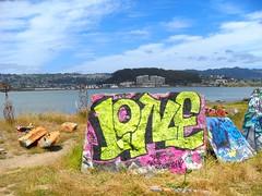 Lone (@ll_by_myself) Tags: art bulb graffiti albany ase tfn