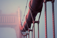 Manmade worm (sparth) Tags: sanfrancisco california bridge san francisco bat august cables manmade worm progression 70200f4l rhytm 5dmkii