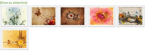 nextgen-gallery-style-06