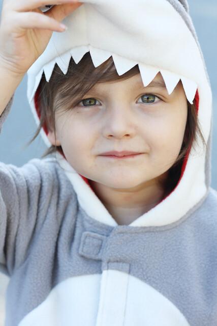 shark1-<span class=
