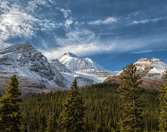 Triple Treat (Philip Kuntz) Tags: hildapeak mountathabasca boundarypeak icefieldsparkway canadianrockies banffnationalpark alberta canada