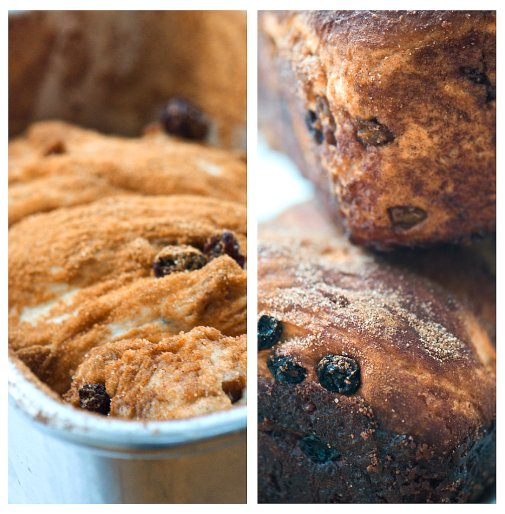 raisin bread collage