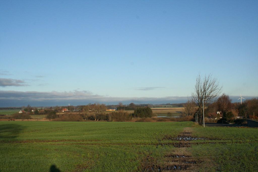 Dansk landskab i december