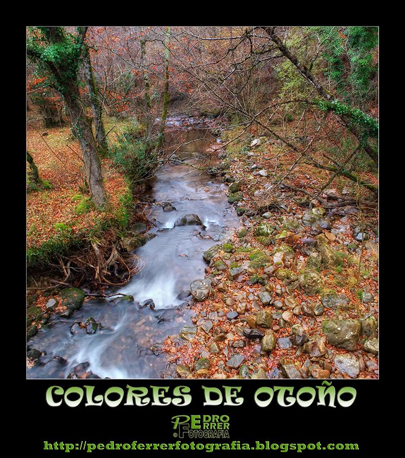 Colores de Otoño - Autumm colours