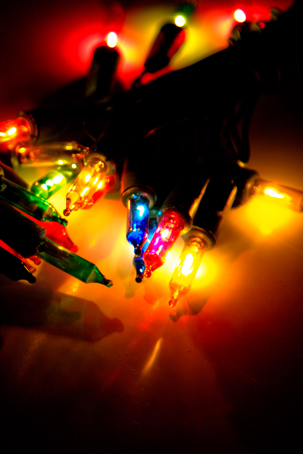 Christmas Light Shenanigans (Blog size)
