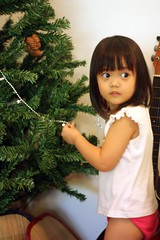 decorating the xmas tree