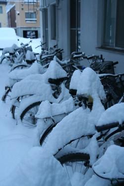 雪 (6).JPG