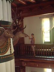Antonin - Radziwill family Hunting Lodge (EuCAN Community Interest Company) Tags: poland 2009 eucan milicz baryczvalley