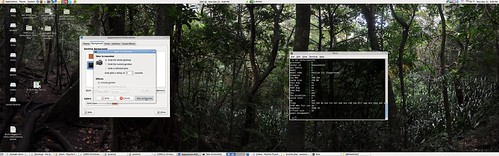 Widescreen Ubuntu with Wallpaper