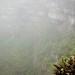 Galpagos - Santa Cruz- Los Gemelos