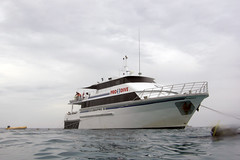 ScubaPro II (gmliii) Tags: from boat great we ii barrier reef lived scubapro dived