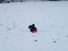 S0102773 (CassiePawpads) Tags: snow castlehill sledge