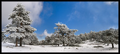 Sierra de Guadarrama2 (kafka2127) Tags: madrid nieve sierra panoramica invierno montaña guadarrama cima