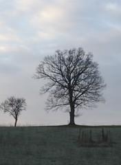 IMG_2219.jpg (lindie_naughton) Tags: aveyron bastide ruralfrance lafranceprofonde