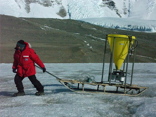 McLane trap in Antarctica