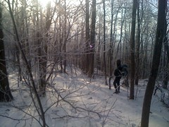 John in Snowy Woods