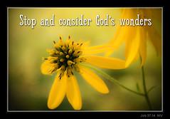 God's Wonders