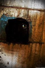 Evil Eye (murilo.h4ck3r) Tags: light eye abandoned strange digital photoshop canon eos rebel model nikon fear ghost bad evil ufo devil asylum fantasma hdr corredor ovni xsi misterious hospicio medo hunted abandonado vulto assombrado 450d