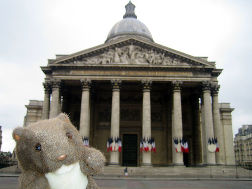 Wombat in Paris
