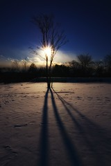 Winter shadow (waltersoluh) Tags: winter shadow sky cloud sun snow tree nature landscape 1001nights rs legacy supershot fineartphotos mywinners platinumphoto superaplus aplusphoto visiongroup theunforgettablepictures colorsofthesoul dragondaggerphoto redmatrix platinumpeaceaward magicunicornverybest adrinnesmagicalmoments