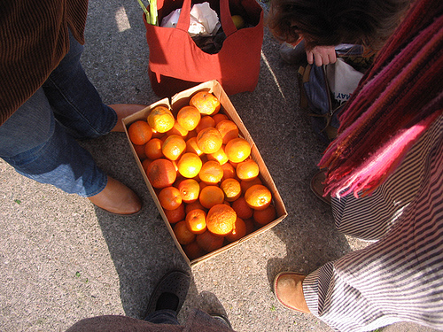 box of seville oranges from the farmer's market
