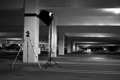 Day Nineteen Setup Shot (joey_joey_joey) Tags: urban chicken sunglasses parkinggarage lasvegas bokeh project365 setupshot canoneos1dmarkiii younganddangerous strobist canonef35mm14lusm tzafityan