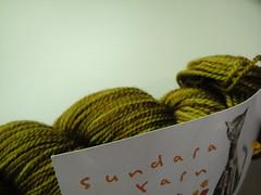 Sundara Sock Earth Goddess (robjs10) Tags: sock earth goddess sundara