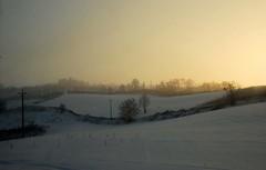 a sunny winter day (Liberty Place) Tags: trees sunset panorama nature alberi tramonto hill natura piemonte paesaggio colline alessandria fiatlux naturalmente volpedo theunforgettablepictures