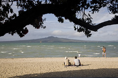 Kohimaramara (Jonathan!) Tags: newzealand beach auckland tre aotearoa nzl pohutukawa rangitoto kohimarimara