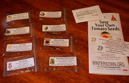 Tomato seeds from Wintersown