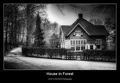 House in Forest (Joop Snijder) Tags: road park old sky blackandwhite house holland brick nature netherlands beautiful beauty comfortable forest landscape outside outdoors europe realestate arnhem rich scenic thenetherlands peaceful tranquility ground nobody foliage silence hedge lane land dirtroad mansion lush expensive relaxation boundary dramaticsky footpath luxury grounds hdr countryroad westerneurope wealth elegance sonsbeek gelderland tranquilscene benelux northerneurope thoroughfare moodysky pedestrianwalkway ruralscene buildingexterior frontorbackyard constructionmaterial residentialstructure livinginluxury naturallandstate treearea