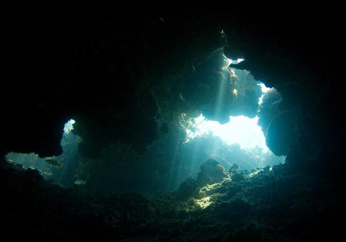 Pulau Menjangan 07