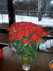 flower-bouquet 11 (55roses) (11) (Wortra) Tags: flowers roses blumen february09