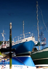 Tipsy Pelican (bobfranklin) Tags: blue reflection upsidedown pelican portsmouth mast hull fishingboat southsea camber
