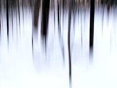winteree (dmixo6) Tags: winter light sky snow ontario canada abstract dark february muskoka 2010 dugg dmixo6