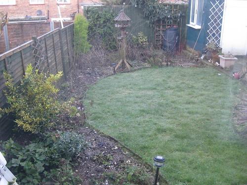 Lower lawn 01/03/2010