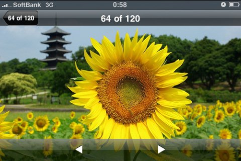 iPhoneでflickr #7