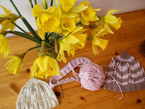 spring fresh and knitting