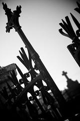 Immortel, jusqu'à preuve du contraire. (Emir de Nelek) Tags: white black cemetery grave graveyard death gate noir cross mort grille blanc croix tombe aficionados portail cimetière