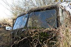 Leyland Comet partially visible (fryske) Tags: abandoned truck junk rust rusty lorry herefordshire scrapyard comet scrap derelict leyland
