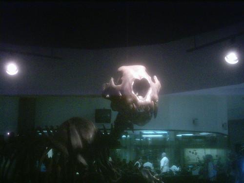 prehistoric creature