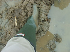 S6001441 (solentbill) Tags: mud wellies neogalloway