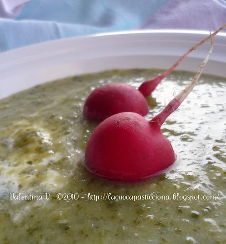 Crema di zucchine e foglie di rapanello