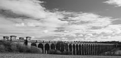 Ouse Valley viaduct - Sussex (picoman27) Tags: blackandwhite sussex railwayviaduct ousevalleyviaduct londontobrightonline