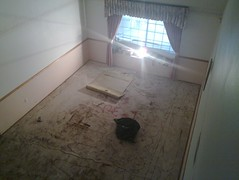 living room, carpet ripped out