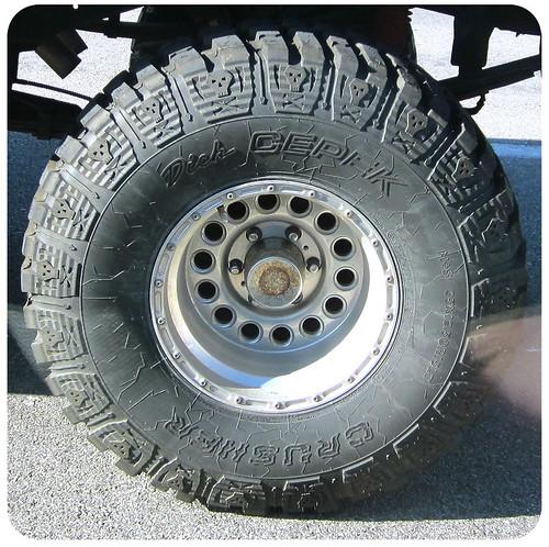 Skull Tire
