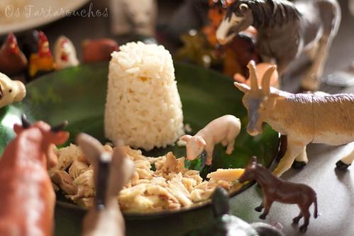 O cocho o primeiro / El cerdo primero / pig first