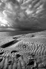 Northumberland Dunes 02 (austin054) Tags: sea sky blackandwhite beach contrast landscape coast sand pattern shell dramatic northumberland ripples anawesomeshot