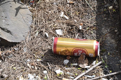 Beer Can ~ Lost